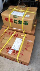 20200707会津から届いたタマネギ