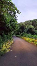 20200715山からの帰り道の様子峠道