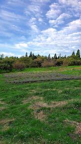 20201012栗拾いの途中ラベンダー畑を望む