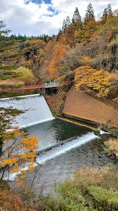 20201111藤倉水源池の紅葉探索3