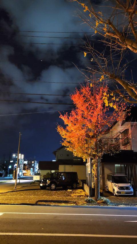 20201111外の様子夜のはじめ頃イチョウの葉っぱが真っ赤に