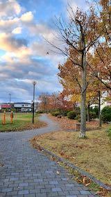 20201113速歩途中の公園内と南の空