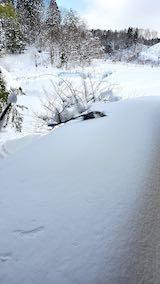 20210112作業小屋の雪下ろし前の様子2