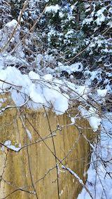 20210112幌の上に積もった雪の雪下ろし作業後2