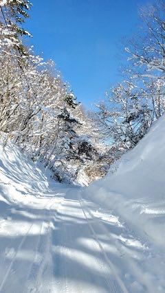 20210112山からの帰り道峠道の頂上