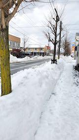 20210113外の様子昼過ぎ歩道と東大通り