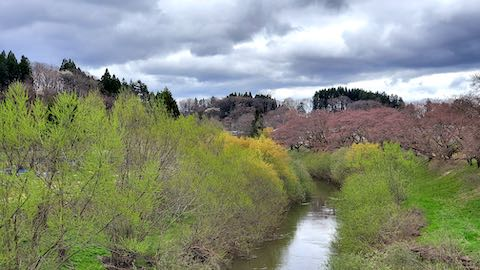 20210405外の様子昼前広面大橋から下流の太平川を望む2
