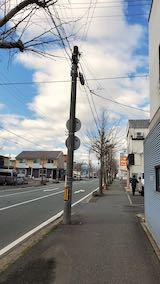 20210405外の様子昼過ぎ歩道と東大通り3