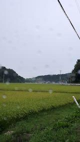 20210824山からの帰り道田んぼと空小雨模様