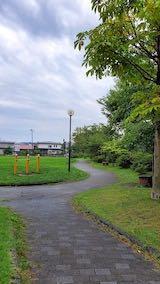 20210830速歩途中の公園内と南の空