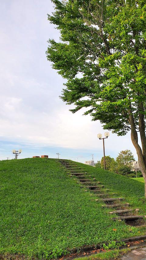 20210830速歩途中で望んだ公園内高台の様子