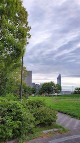 20210901速歩途中の公園内と北の空