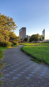 20210903速歩途中の公園内と北の空