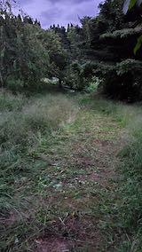 20210903ラベンダー畑へ向かう途中の道路草刈り後