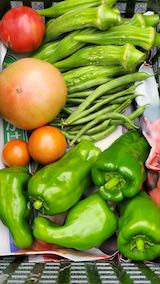 20210905収穫した野菜