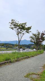 20210908外の様子昼前太平山