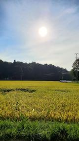 20210910山へ向かう途中の田んぼと空