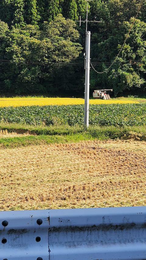 20210911山へ向かう途中の田んぼと空稲刈り2