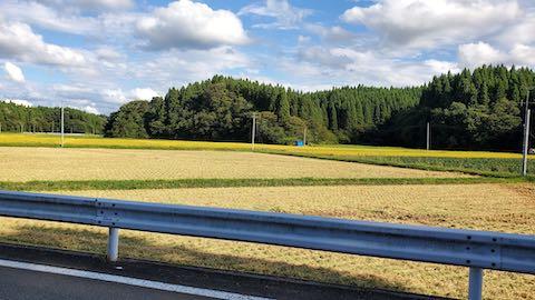 20210911山へ向かう途中の田んぼと空稲刈り3